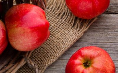Démonstration de Pressage de Pommes